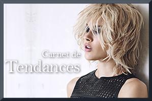Carnet de Tendances 2015